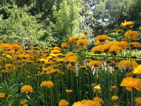 giardino botanico madrid madrid almeno 10 buone ragioni per visitarla