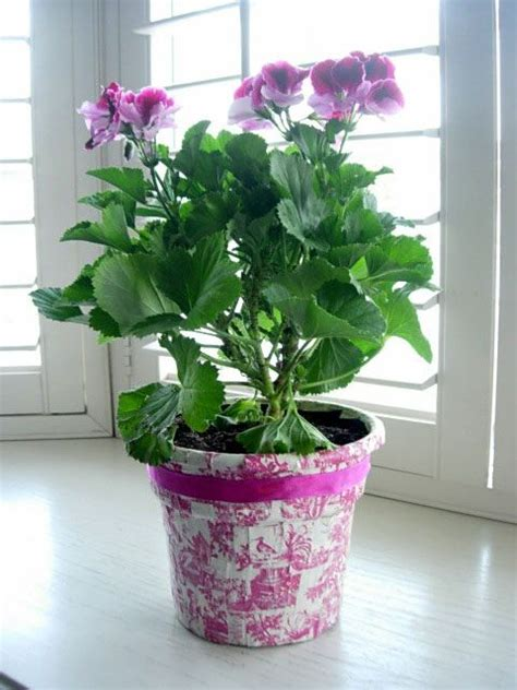 How To Decorate A Pot by 36 Best Images About Flower Pots On Staging