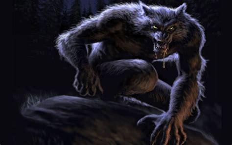 imagenes de lobos chidas hombre lobo ilustraci 243 n im 225 genes de miedo y fotos de terror