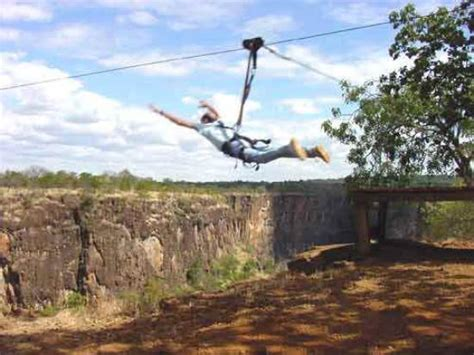 zambezi swing zambezi swing picture of kaazmein lodge and resort