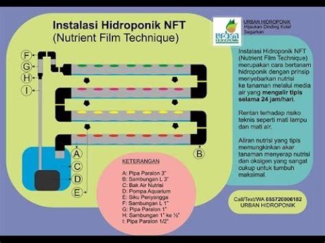 Hidroponik Sederhana Pipa Paralon cara membuat instalasi hidroponik sistem nft memakai