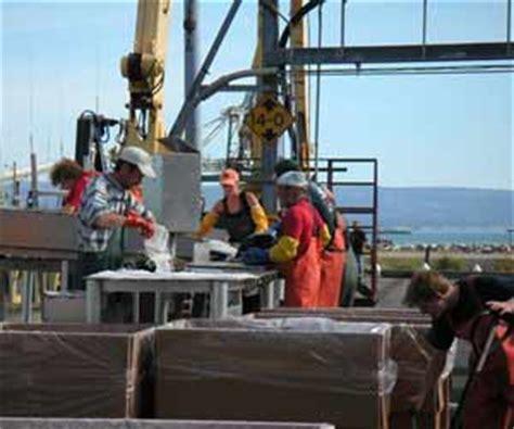alaska fishing boat summer jobs pay fish processing jobs in alaska summer salmon processing jobs