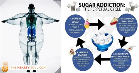 10 Day Detox Autoimmune Solution by 600 Lost 4 000 Pounds In Just 10 Days Here S How