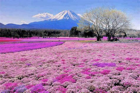 most beautiful places in the us mount fuji japan 20 most beautiful places inspirational quotes pictures