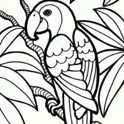 jungle birds coloring pages parrot coloring page jungle parrot coloring page 300x300