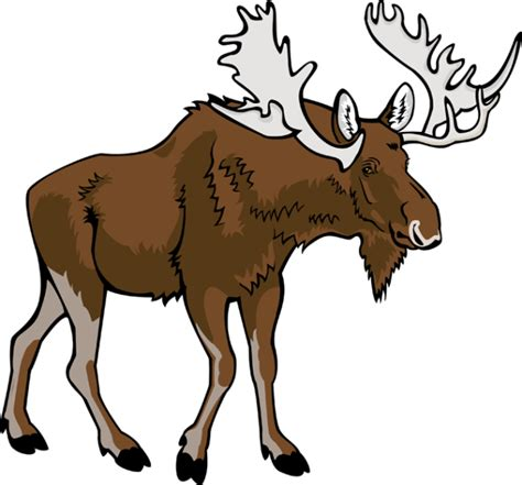 moose clipart 4 cliparting