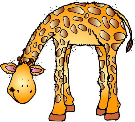 animali clipart free zoo animal clipart cliparts co