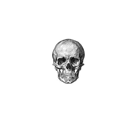 small skull tattoos tumblr best 25 tiny skull tattoos ideas on small