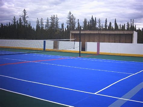 backyard roller hockey rink backyard ice rink cost 2017 2018 best cars reviews