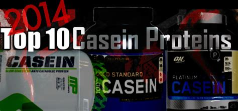 best casein supplement 10 best casein protein powders for 2014 casein supplements