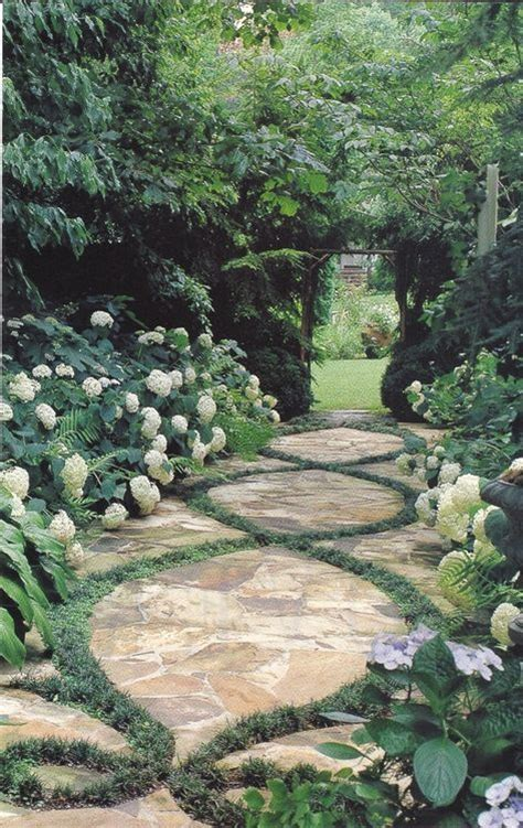 pathway accented  ground cover  lined  hydranga backyard pinterest gardens