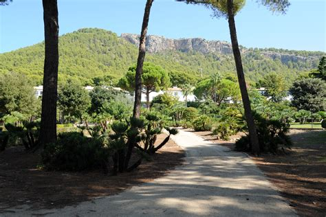 giardini terrazzati awesome luhotel formentor a maiorca i giardini terrazzati