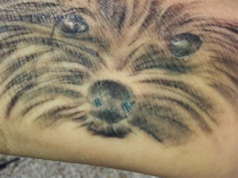 yorkie tattoo pictures wrist tattoo of yorkie thinkin about inkin pinterest