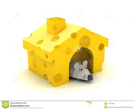 cheese house mouse and cheese house stock photography image 11737382