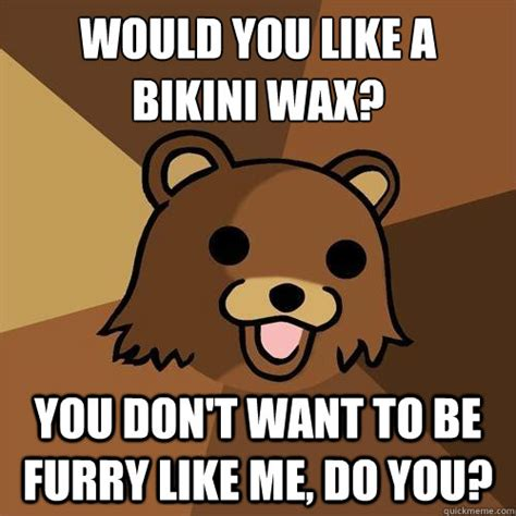 Bikini Meme - would you like a bikini wax you don t want to be furry