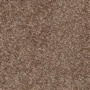 Shaw Carpeting Shaw Carpet Of Wholesale Discount Price