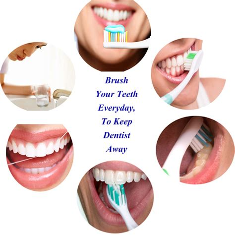 how to brush your s teeth how to brush your teeth better steps techniques for brushing teeth