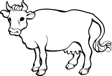 Boneka Sapi Lying Cow Hitam Putih 40 gambar kartun sapi paling keren dan lucu gambar mania
