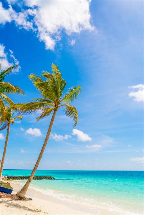 beautiful tropical maldives island white sandy beach
