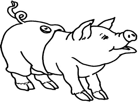 fat pig coloring page fat pig pictures cliparts co