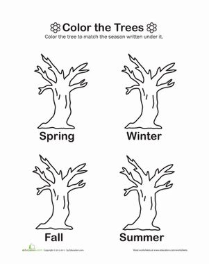 coloring pages trees four seasons color the trees worksheet education com