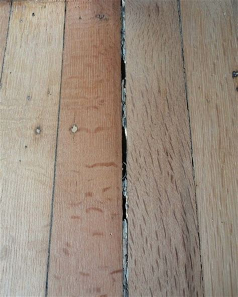 filling wood floor gaps meze