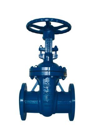 Yoke Kopel Carry 10 Joint Kopel Carry 10 cast steel oval gate valves outside and yoke