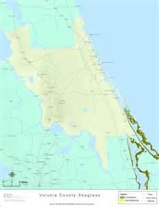 florida seagrass volusia 2008