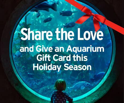 Monterey Bay Aquarium Gift Cards - monterey bay aquarium share your love of the aquarium