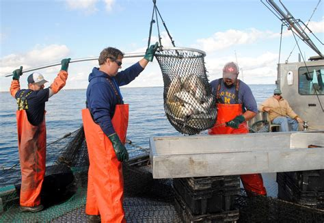 commercial fishing boat gear dnr thumb area lake huron commercial fishing experiment