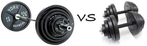 dumbbell bench vs barbell barbell bench press vs dumbbell bench press lee hayward s total fitness