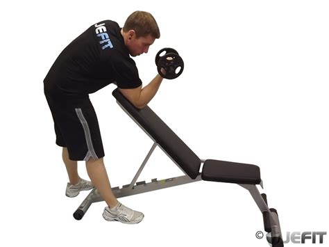 how to use preacher curl bench dumbbell one arm zottman preacher curl exercise database