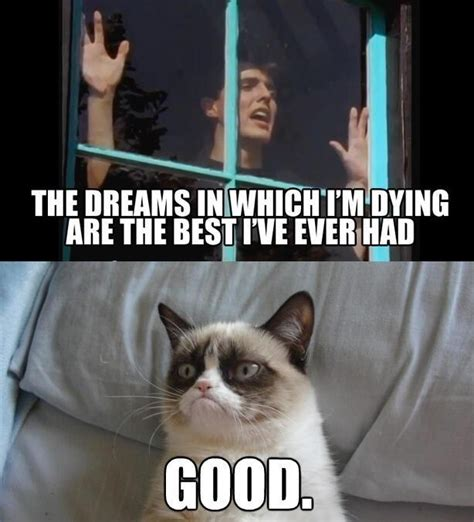 Mad World Meme - mad world grumpy cat know your meme
