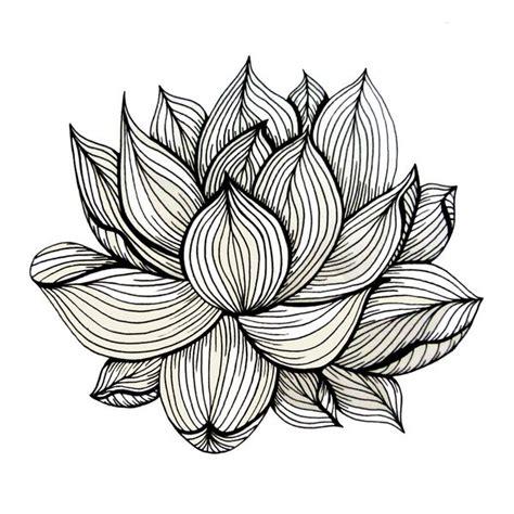 lotus pattern drawing best 25 line art ideas on pinterest line drawing art