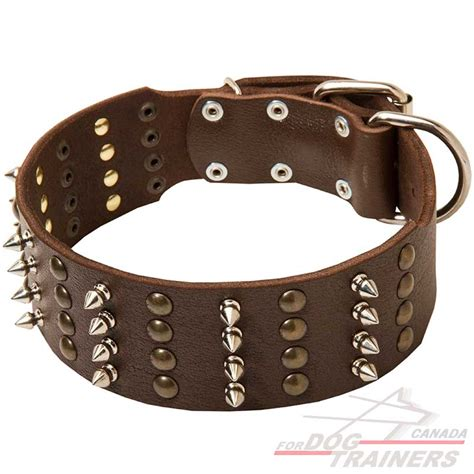 studded leather collars order spiked studded wide leather collar walking canada