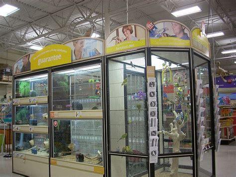 bird cage petsmart office photo glassdoor
