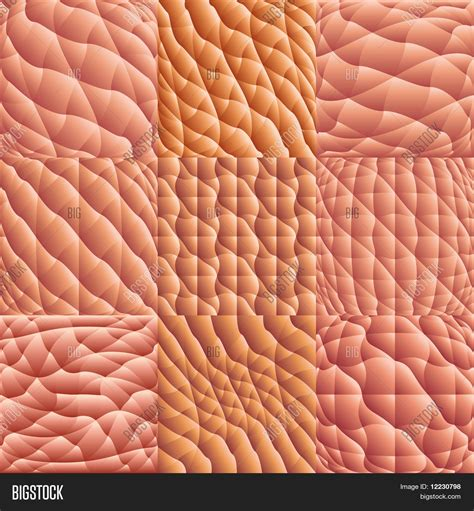 human skin macro picture stock photo 169 jugulator 25119063 vector y foto macro de la piel humana bigstock
