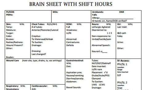 nursing brains template the 10 best brain sheets scrubs the leading