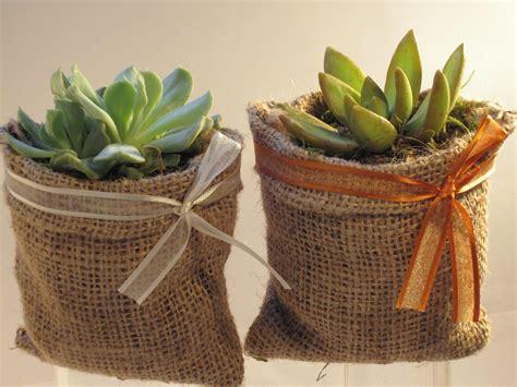 decorar macetas con arpillera duo de suculentas en maceta de arpillera jardineria y