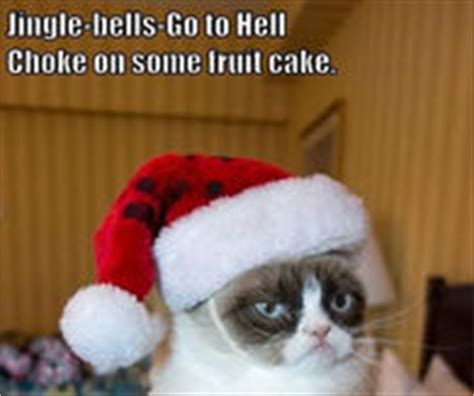 Merry Christmas Cat Meme - funny christmas pictures photos images and pics for