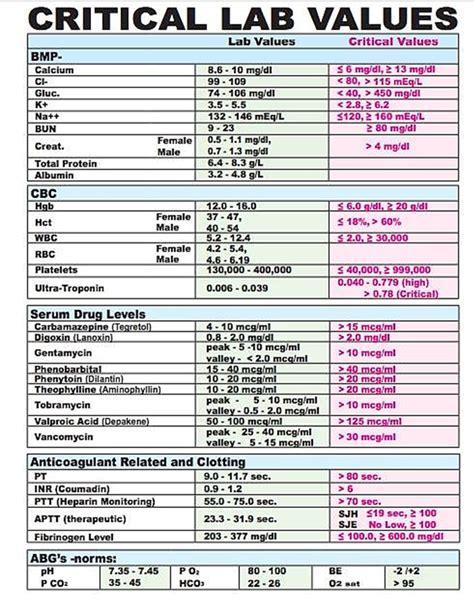 creatinine lab values image gallery lab values