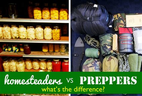 whats cheaper building or buying a house homesteaders vs preppers what s the difference inhabitat green design