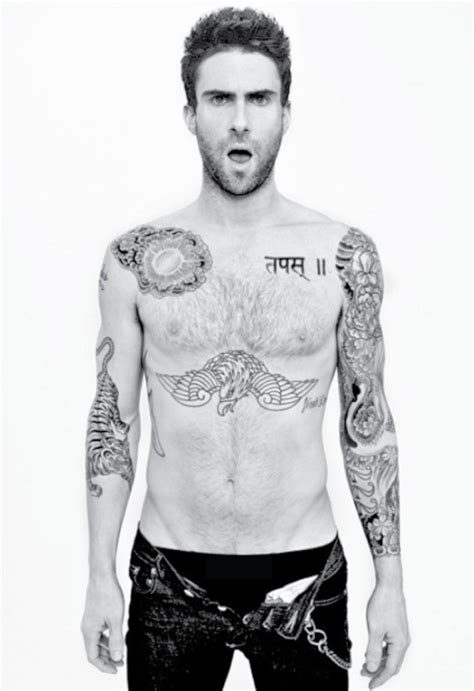 adam levine tiger tattoo adam levine seven times adam levine tiger drawing