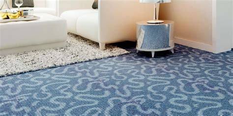 Upholstery Carpet by Carpet Upholstery Cleaning Arcadia Cleaners