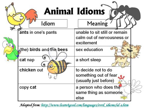 exle of idiom lesson 3 animal idioms ong s
