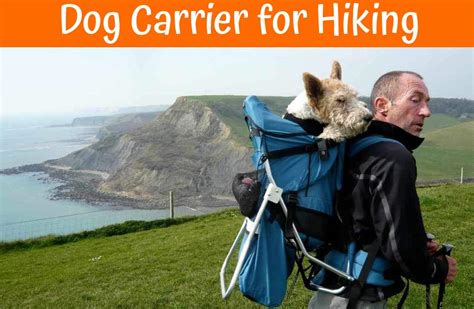 carrier for hiking review of the best carrier for hiking us bones