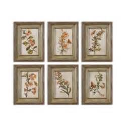 Wall Decor Sets by Orange Florals Wall Set Of 6 Framed Wall