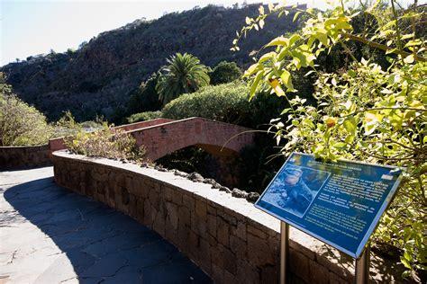 el jardin canario jard 237 n bot 225 nico canario viera y clavijo isla de gran canaria