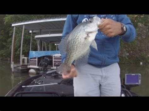 important tip jig fishing  crappie   cork