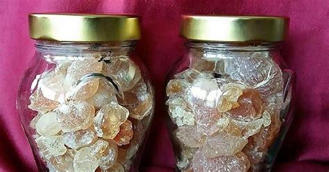 Minyak Zaitun Asli Arab khasiat gum arabic al manna minyak zaitun palestin